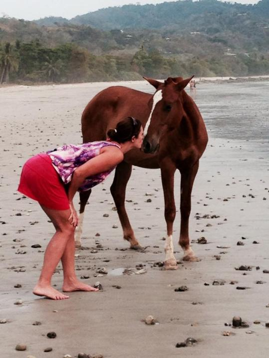 horsey